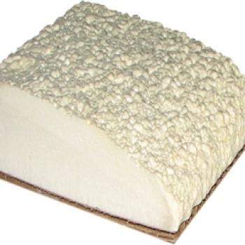 Foam PU