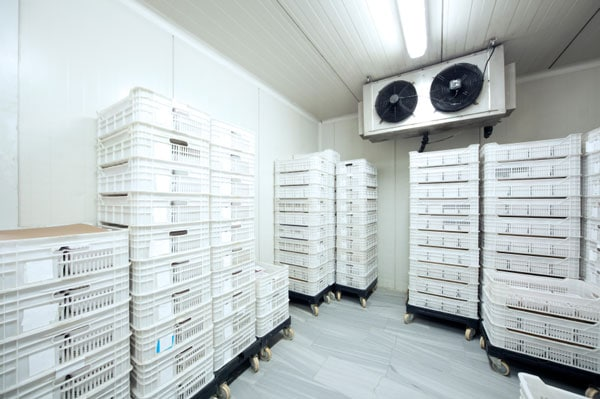 Panel phòng lạnh – kho lạnh và ứng dụng